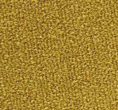 Edel Carpets Adoration 133 Gold 133 Gold