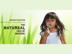 Штучна трава GrassInc THE NATUREAL®